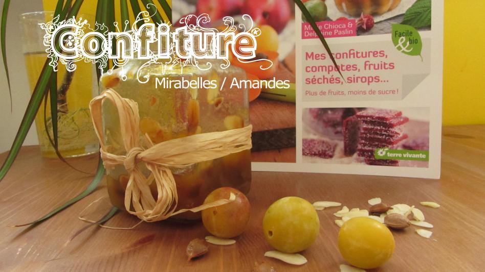 Confiture-mirabelles---septembre-2013-1934.jpg